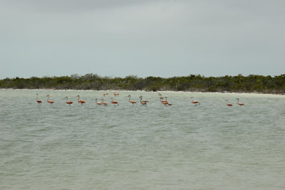 Big Pond, Middle Caicos