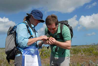 RBG, Kew staff examining plant material in North Caicos Island